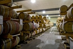 Spring Winery Tours
